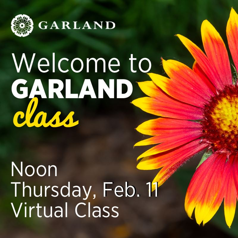 welcome to garland, Thursday, Feb. 11, Noon, Virtual Class